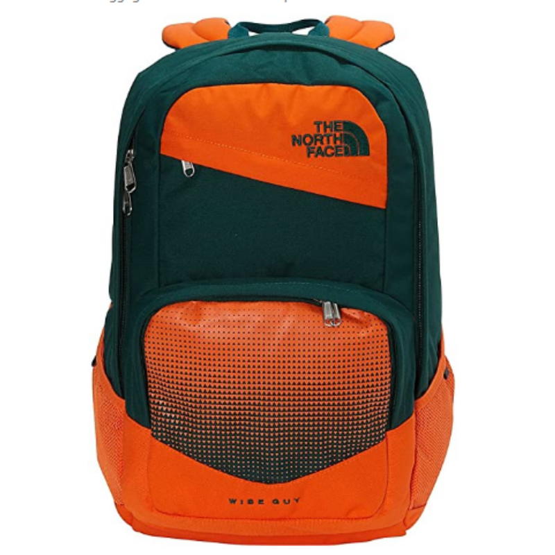 the north face Wise Guy Persian Orange/Botanical Garden Green  27L Backpack  NF00CHH95WZ