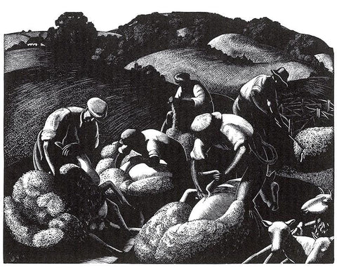 Clare Leighton - May: Sheep Shearing - LEOFRAMES