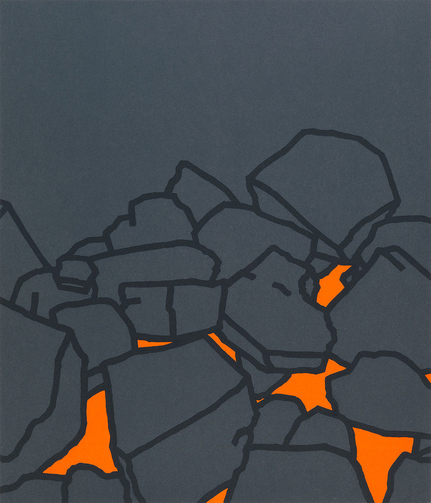 Coal Fire By Patrick Caulfield - LEOFRAMES