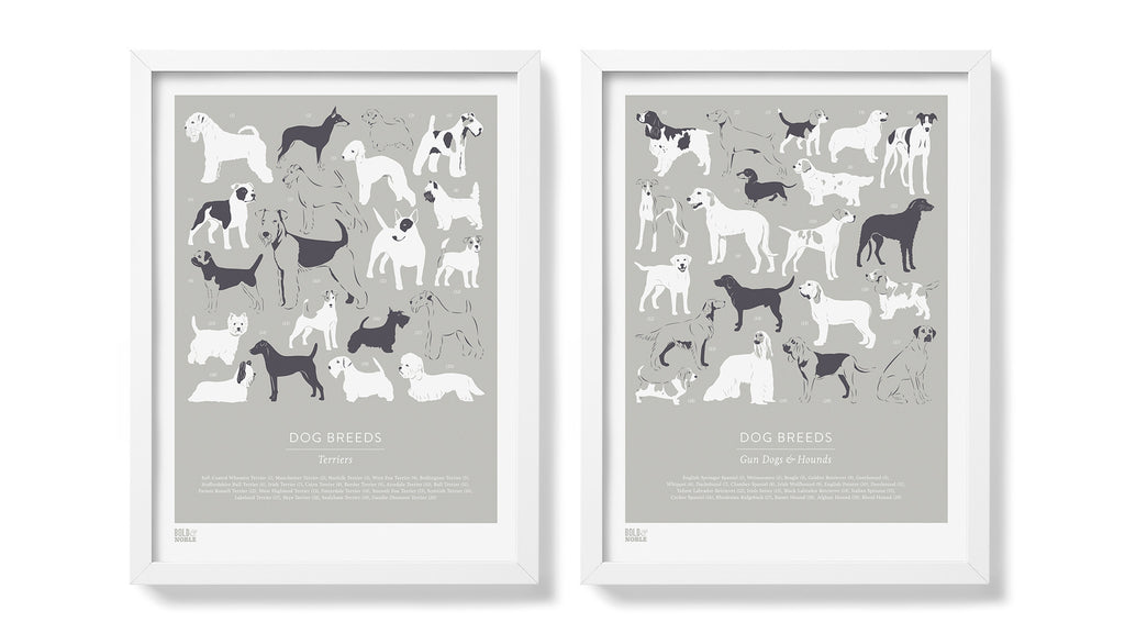 Dog Breeds: Terriers hand-pulled screen print By Bold & Noble - LEOFRAMES