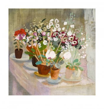 Winifred Nicholson - Cineraria and Cyclamen