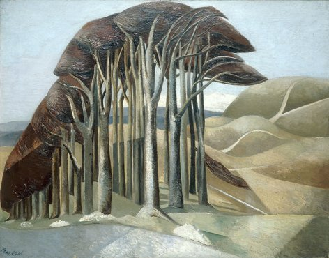 Paul Nash print , wood on the downs ,trees