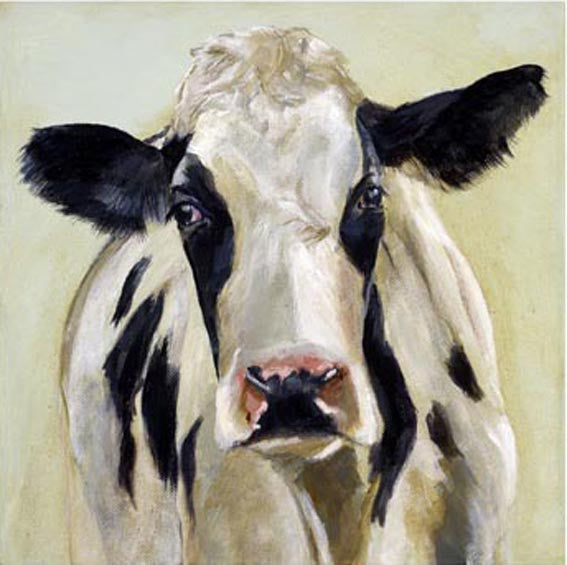 'Sally' Cow By Andy Shattock - LEOFRAMES
