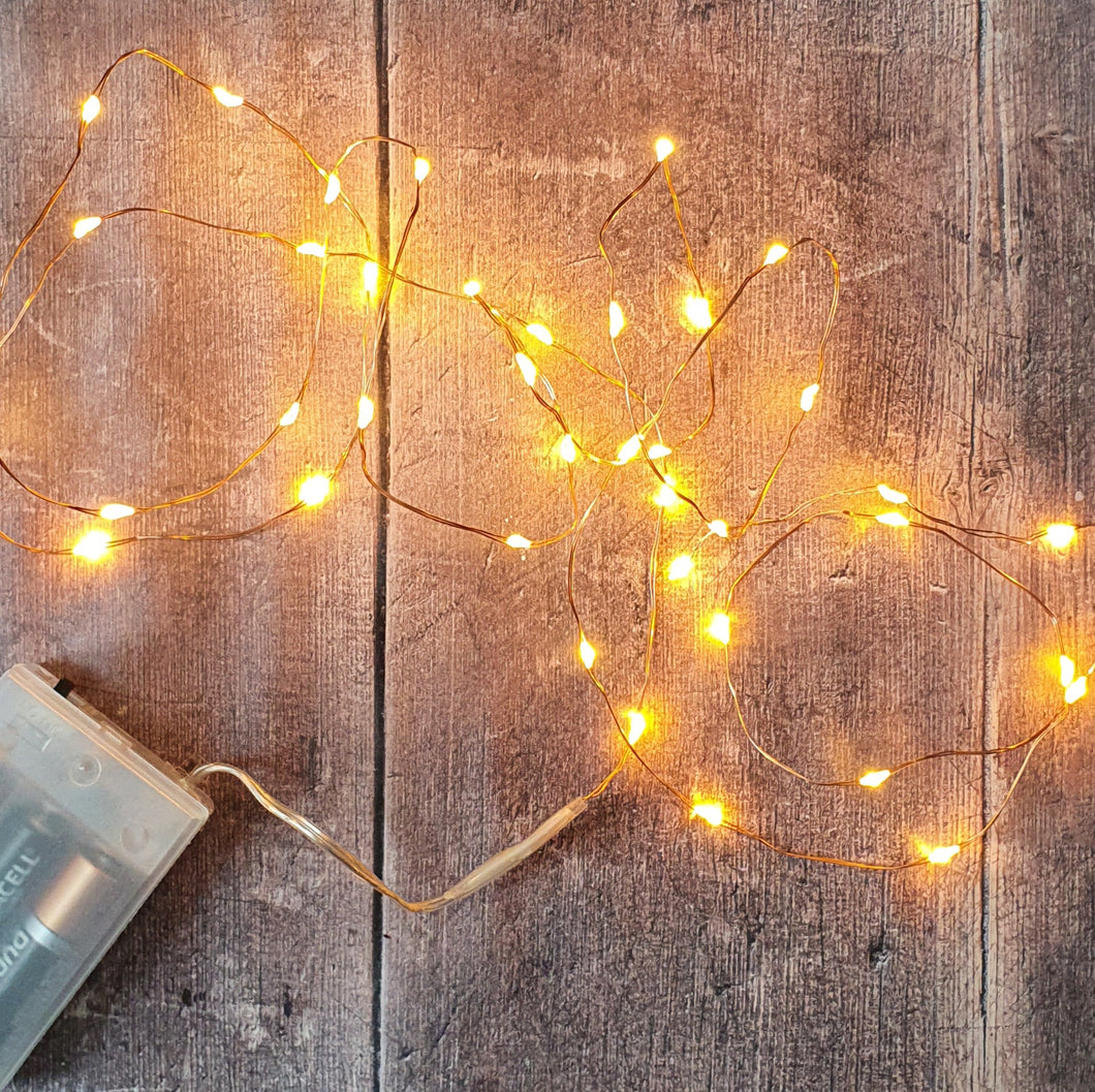 Copper Wire 40-LED fairy lights