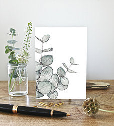Eucalyptus Note Cards set of 6