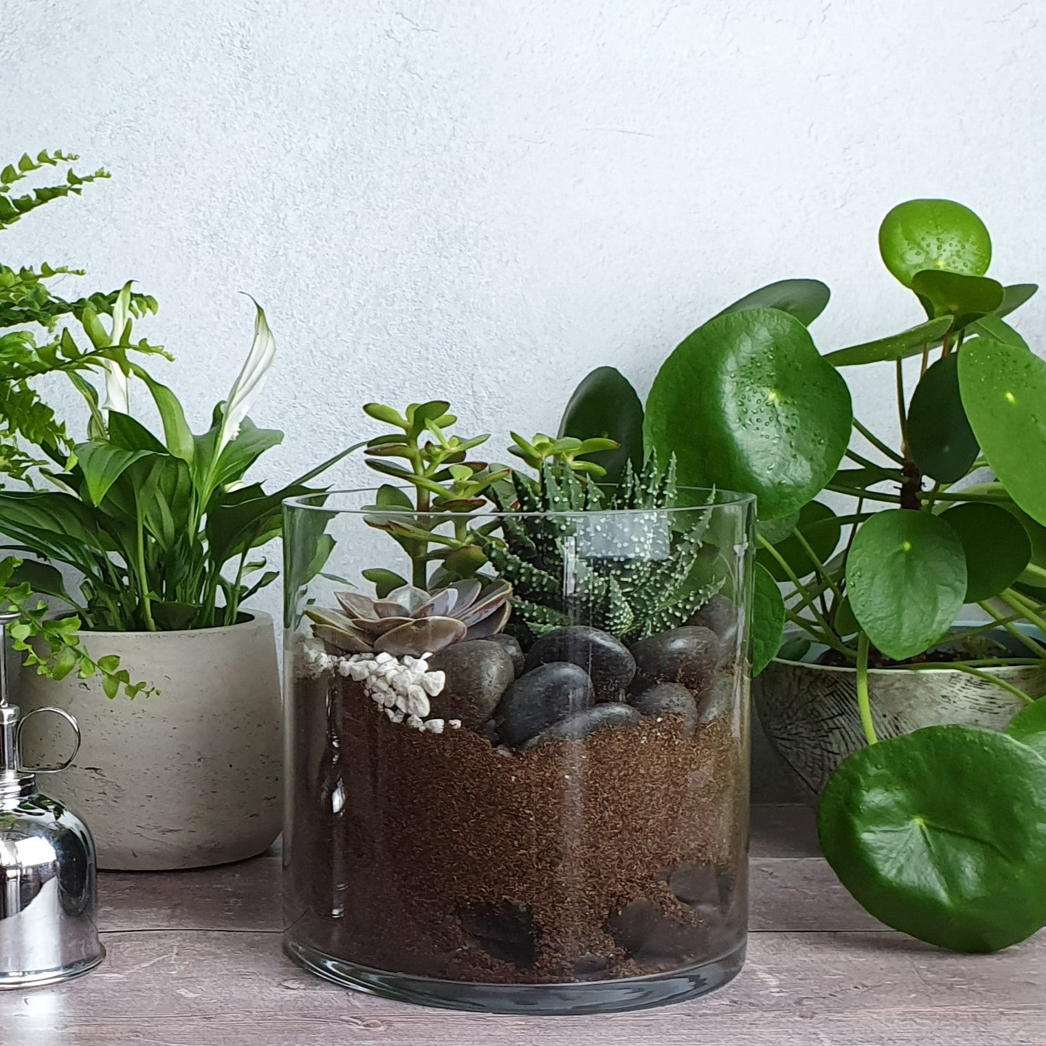 Terrarium & Happy Houseplants Workshop Thursday 18th June