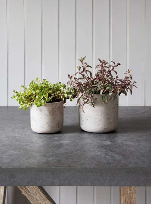 Garden Trading Stratton Plant Pots set of 2