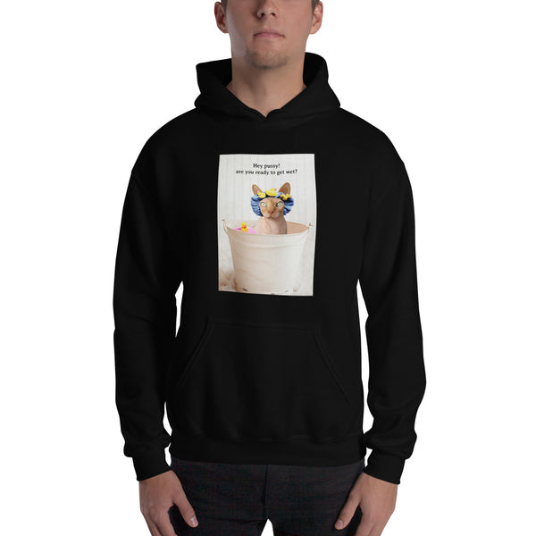 Hey Pussy Are You Ready To Get Wet? | Hoodie