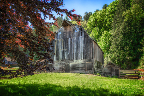 Old Ray Carman Barn - Chilliwack, BC, Canada