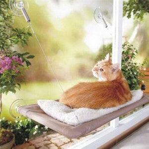 Cat Suction Cup Hammock - looshore