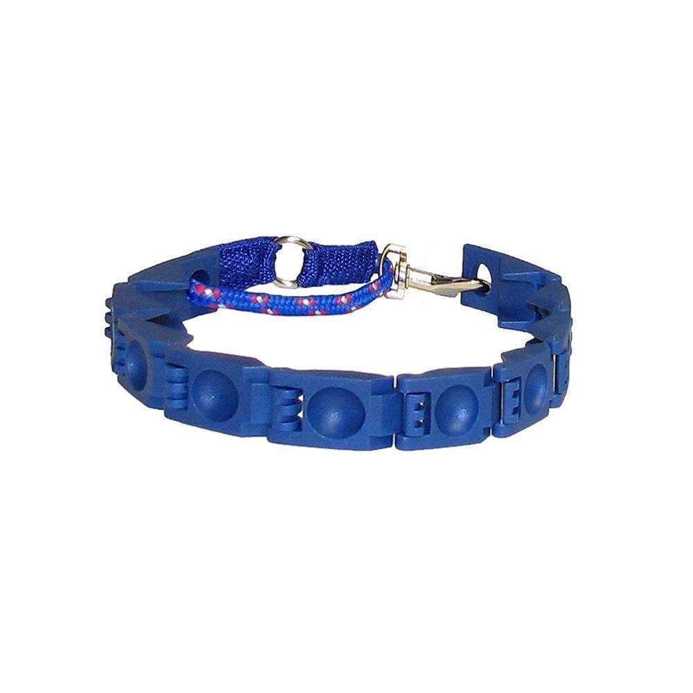 Training Dog Collar - looshore