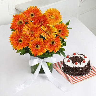 Vase Arrangement of 10 Orange Gerberas with Black Forest Cake (Half Kg)