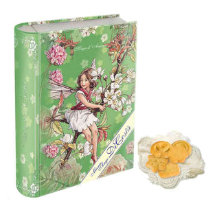 Gift Tin Cookie Green Colour