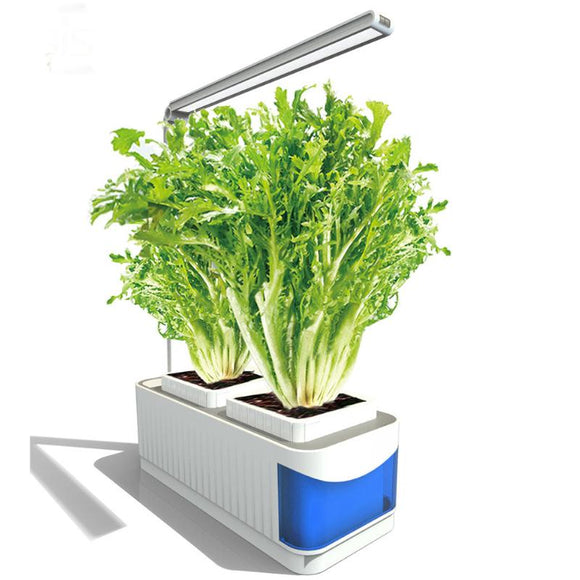desk lamp garden kit