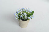 Mini Milan Flowers In PPR Pot-BL