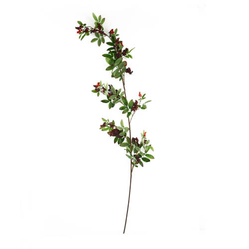 Sumac Spray Branch L.128Cm Red