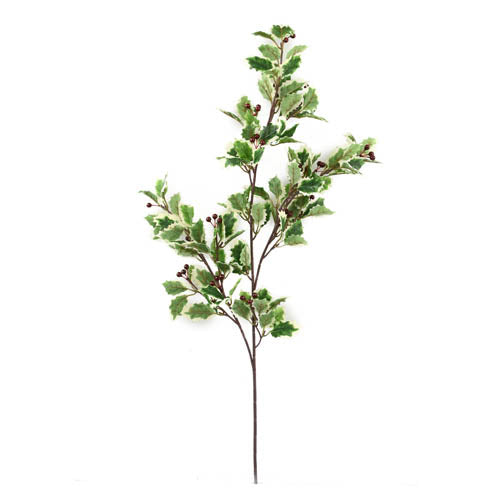 Sgl Holly Spray 73Cm