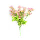 Cosmos Bunch PINK
