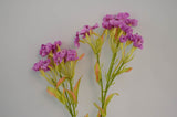 Sgl Carnation x32 44Cm PURPLE