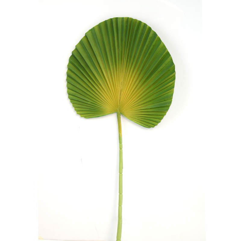 Fan Palm Round GREEN