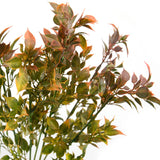 Leaves Pl Bunch S-8085
