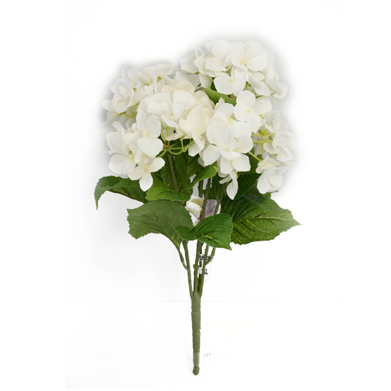 Hydrangea Printted x5 Wh