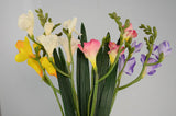 Sgl Freesia 59Cm Cream