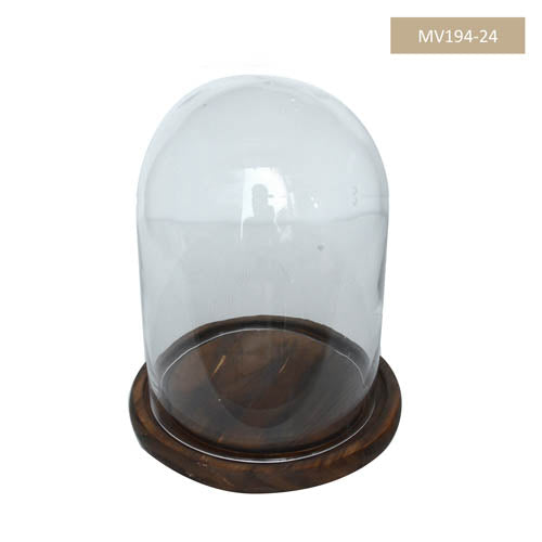 WDN GLASS DOME M D15H28