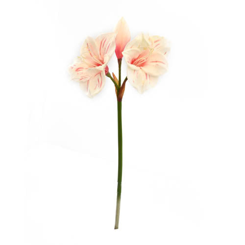 Pu Amaryllis Spray 64Cm-CR.PI
