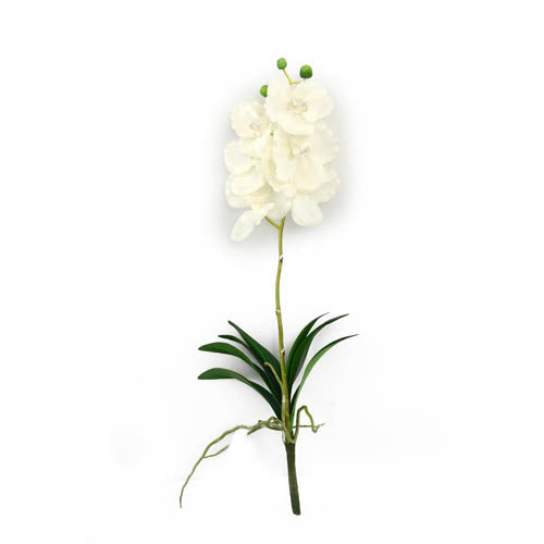 Vanda Orchid Spray 55CM-White