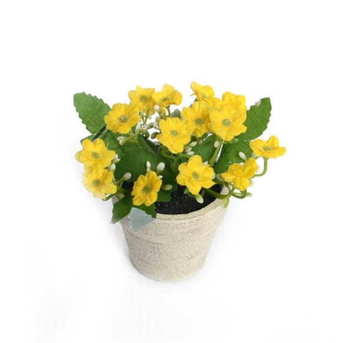 Mini Milan Flowers In PPR Pot- YL