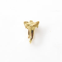 Shark Tooth Clip On Earring