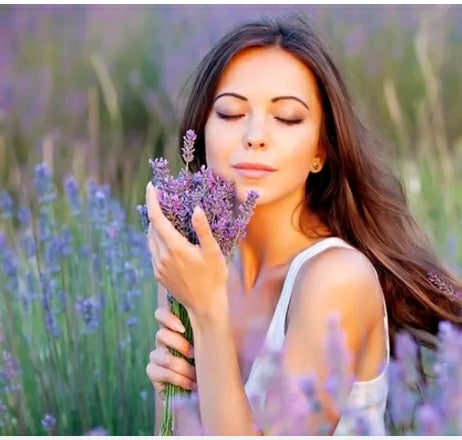 Lavender Oil for Pain