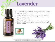 Load image into Gallery viewer, Lavender Touch  10ml