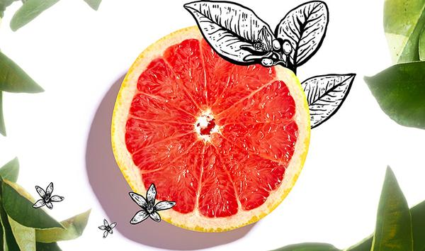 Grapefruit, the twist of oily skin