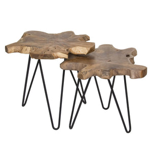 Hairpin Natura Nesting Accent Table - Large