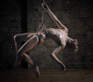 Art of Shibari_3
