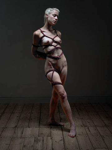 Art of Shibari_1
