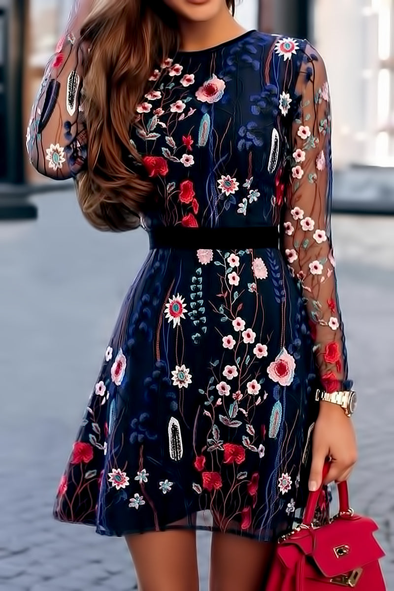 Floral Embroidery Mesh Mini Dress