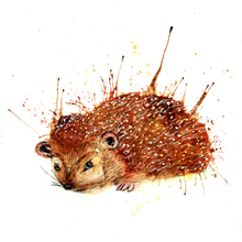 Load image into Gallery viewer, Hedgehog Print