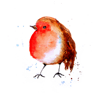 Plump Robin Greeting Card