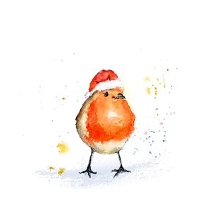 Festive Robin Greeting Card