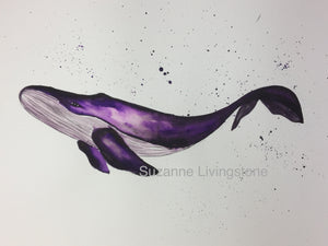 Humpback Whale Watercolour Painting