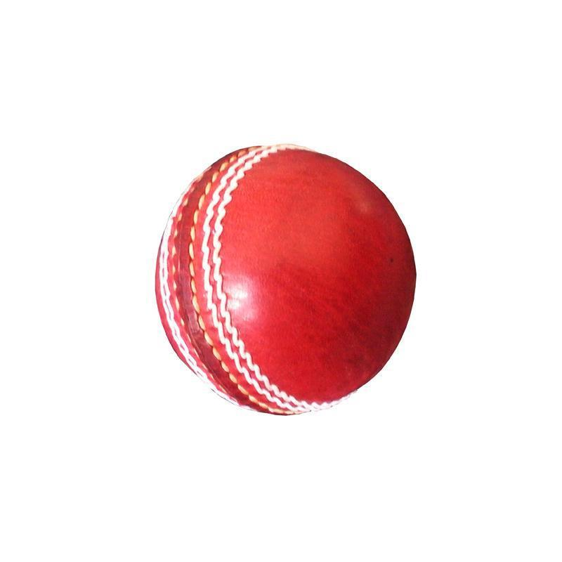 BAS Autograph Cricket ball-MO REPS® Fitness Store