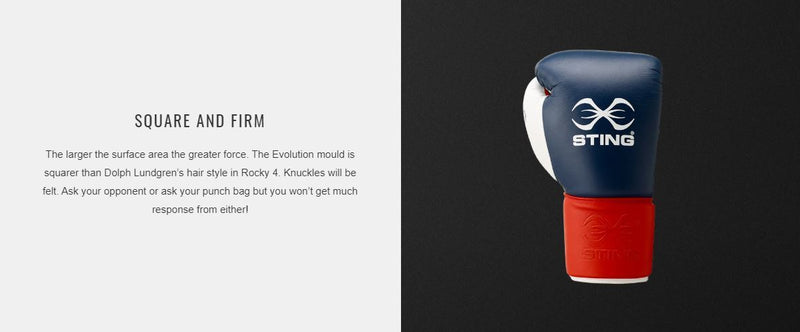 Sting Evolution Boxing Gloves-MO REPS® Fitness Store
