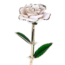 24K GOLD DIPPED ROSE ETERNITY ROSE