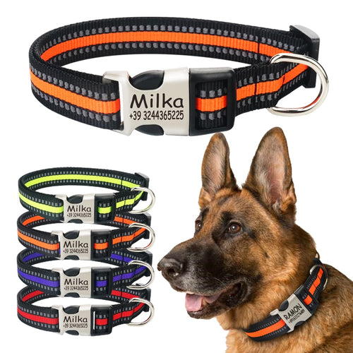 Reflective Nylon Personalized Pet ID Collar