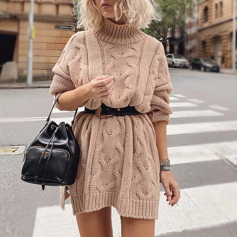 Casual High Neck Long Sleeve Sweater Dress