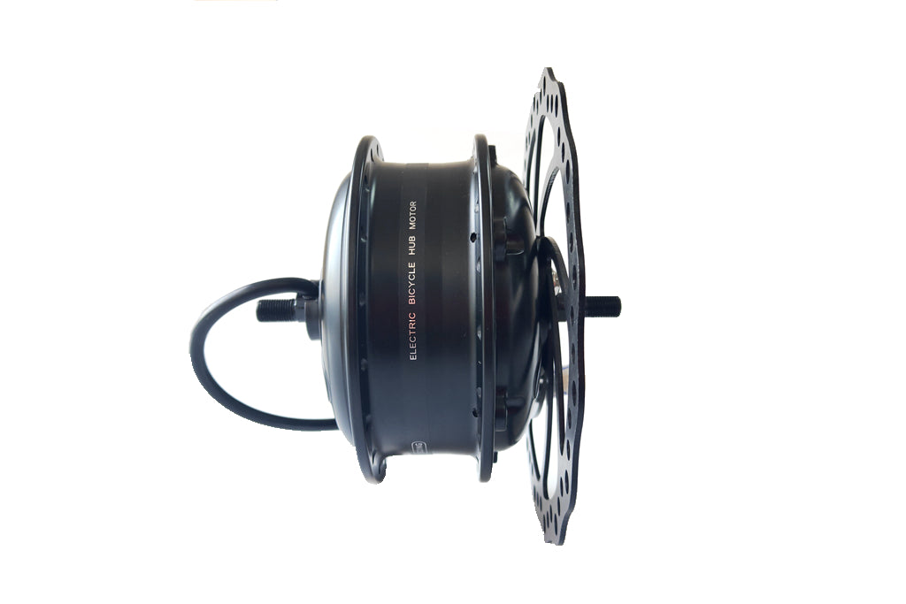 ebike motor with disc-brake