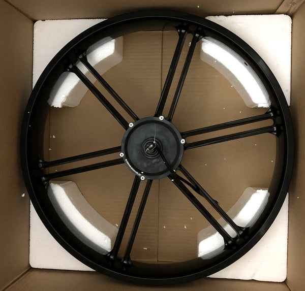 rear fatbike wheel